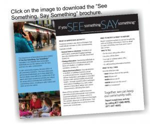 See-Say Trifold Brochure