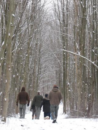 shaw winter